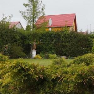 zieleń w domu opieki Modrzew
